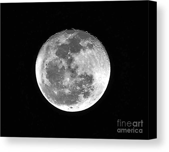 Moon Canvas Print featuring the photograph Wolf Moon Waning by Al Powell Photography USA