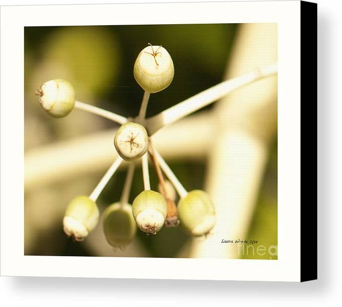Berries Canvas Print featuring the photograph Yellow Berries by Artist and Photographer Laura Wrede