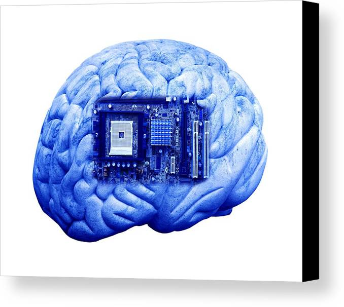 Socket 754 Canvas Print featuring the photograph Artificial Intelligence And Cybernetics by Victor De Schwanberg