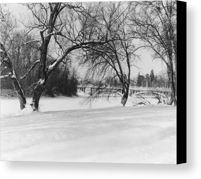 Winter Canvas Print featuring the photograph A Hazy Shade Of Winter by Philip G