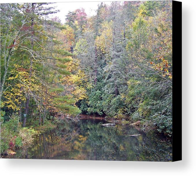 Autumn Forest Canvas Print featuring the photograph Autumn Reflection by Patricia Taylor