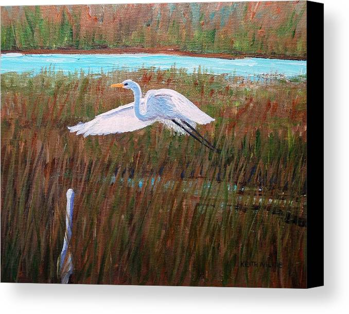 Egret Canvas Print featuring the painting Egret Watching by Keith Wilkie