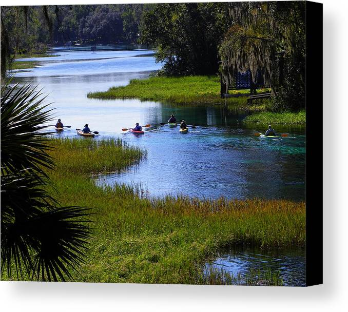 Nature Canvas Print featuring the photograph Let's Kayak by Judy Wanamaker