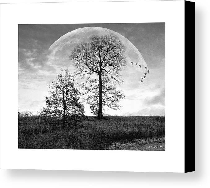 2d Canvas Print featuring the photograph Moonlit Silhouette by Brian Wallace