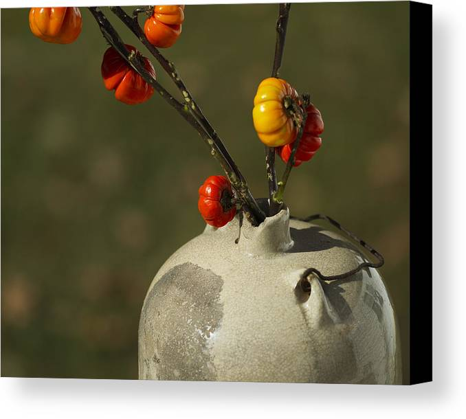 Solanum Integrifolium Canvas Print featuring the photograph Pumpkin On A Stick In An Old Primitive Moonshine Jug by Kathy Clark