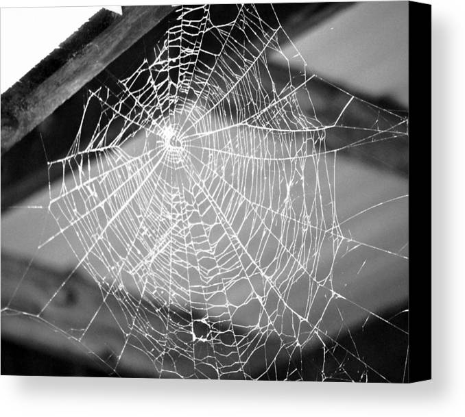 Black And White Canvas Print featuring the photograph Self Portrait by Kim Hymes