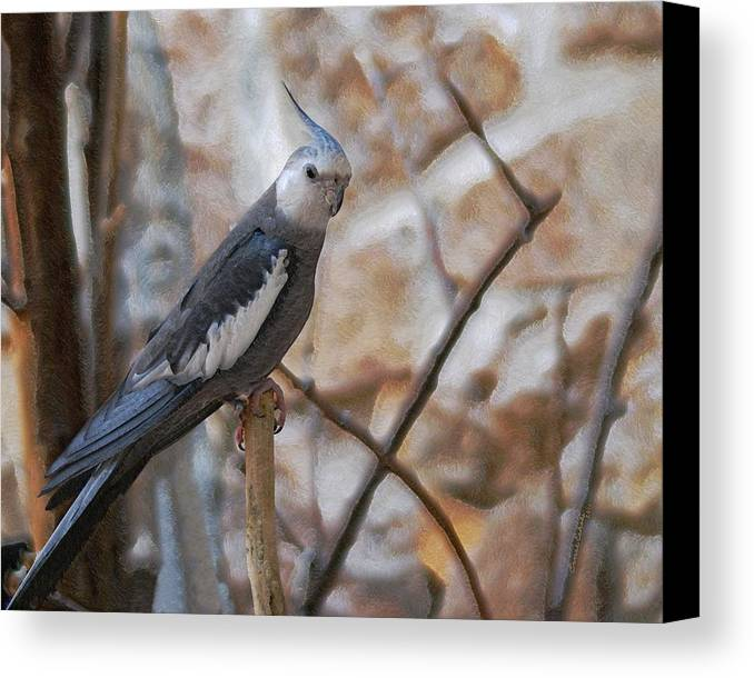 Cockatiels Canvas Print featuring the photograph Sitting Pretty by Ernie Echols