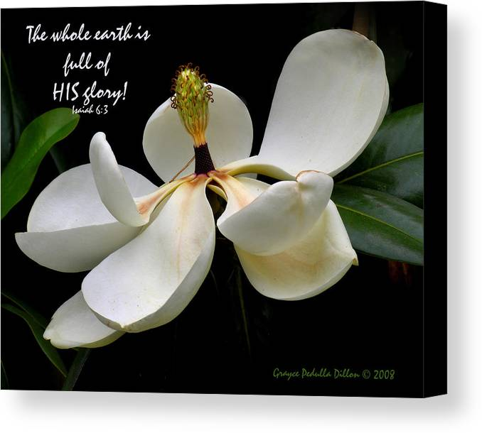 Magnolia Canvas Print featuring the photograph The Whole Earth Is Filled With His Glory by Grace Dillon