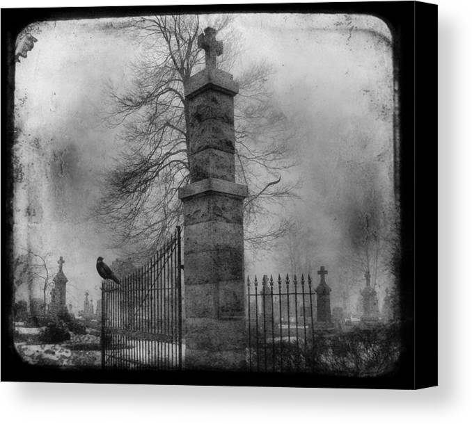 Gate Canvas Print featuring the photograph Entrance by Gothicrow Images