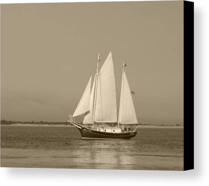 Ketch Canvas Print featuring the photograph Ketch - Nantucket Harbor by Henry Krauzyk