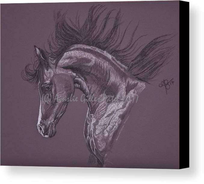 Horses Canvas Print featuring the drawing Aubergine Arabian Iv by Ainslie Gilles-Patel
