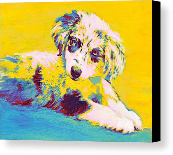 Aussie Canvas Print featuring the digital art Aussie Puppy-yellow by Jane Schnetlage