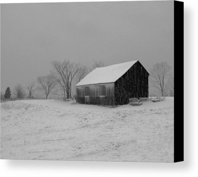 Nature Canvas Print featuring the photograph Cold Winter Night by Martie DAndrea