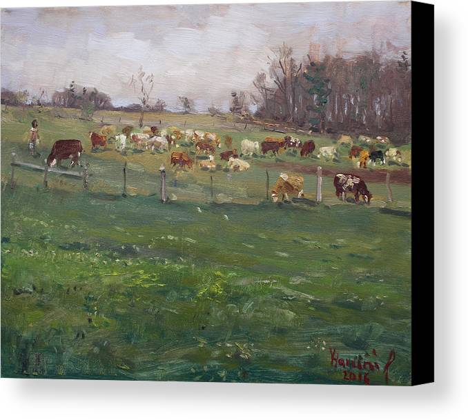 Cows Canvas Print featuring the painting Cows In A Farm, Georgetown by Ylli Haruni