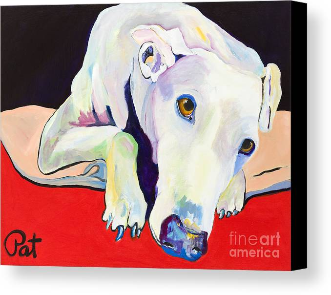 Animals Pets Greyhound Canvas Print featuring the painting Cyrus by Pat Saunders-White