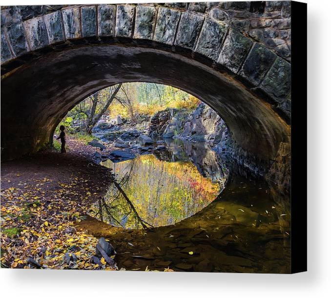 Eye Canvas Print featuring the photograph Eye by Mary Amerman