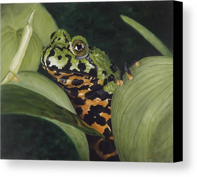 Toad Canvas Print featuring the painting Fire Belly Toad by Elizabeth Rieke Hefley