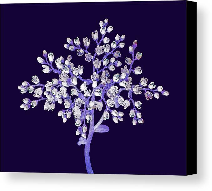 Flower Canvas Print featuring the photograph Flower Tree by Digital Crafts