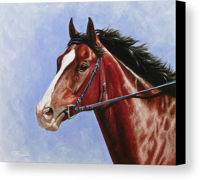 Horse Canvas Print featuring the painting Horse Painting - Determination by Crista Forest