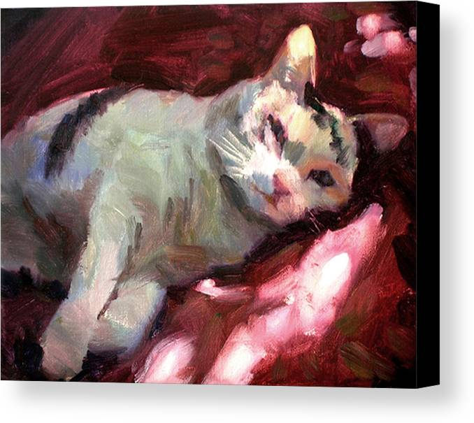 Cat Canvas Print featuring the painting Luna In The Sun by Merle Keller
