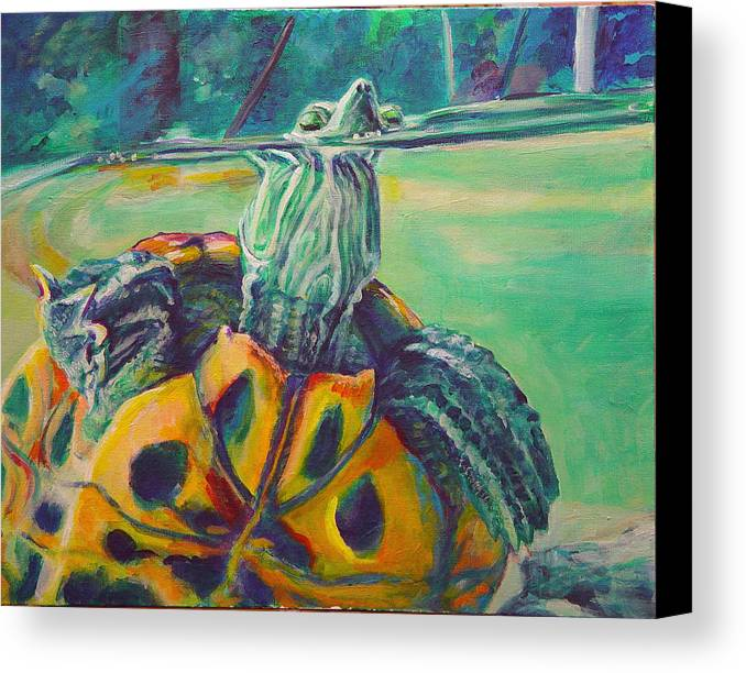 Turtle Canvas Print featuring the painting Peeking by Gail Wartell