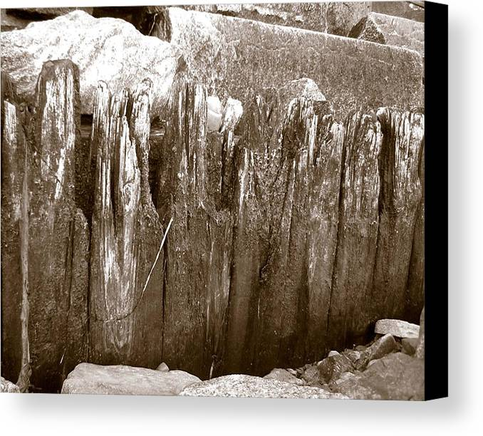Ocean Canvas Print featuring the photograph Plimouth Wood by Heather Weikel