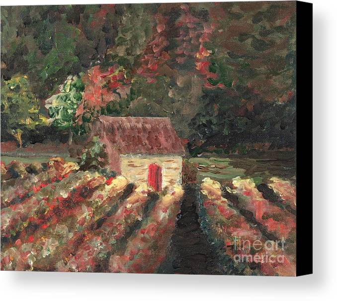 Landscape Canvas Print featuring the painting Provence Vineyard by Nadine Rippelmeyer
