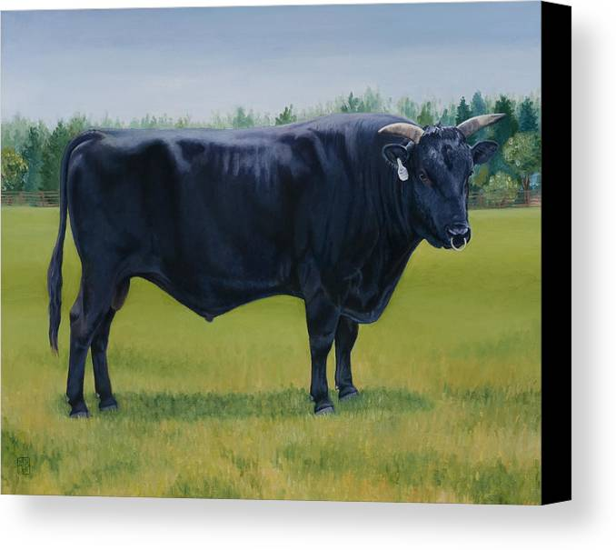 Bull Canvas Print featuring the painting Ralphs Bull by Stacey Neumiller