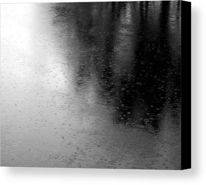 River Canvas Print featuring the photograph River Rain Naperville Illinois by Michael Bessler