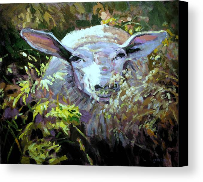 Animals Canvas Print featuring the painting Sheepish by Brian Simons