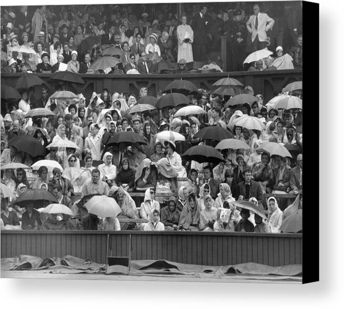 Adult Canvas Print featuring the photograph Soggy Supporters by Ron Stone