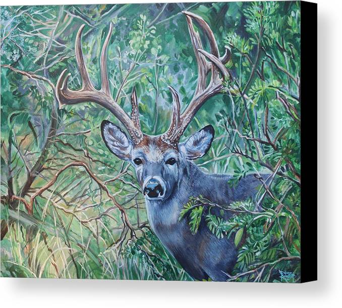 Deer Canvas Print featuring the painting South Texas Deer In Thick Brush by Diann Baggett