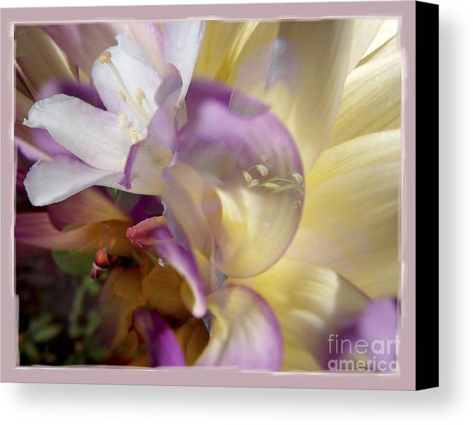Flower Canvas Print featuring the digital art Spring Overture by Chuck Brittenham