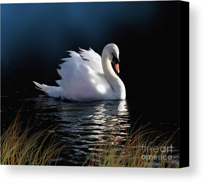 Swan Canvas Print featuring the painting Swan Elegance by Robert Foster