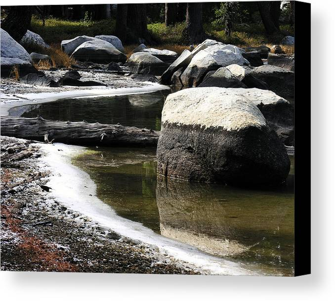 Nature Canvas Print featuring the photograph Vernal Pond Xiii by D Kadah Tanaka