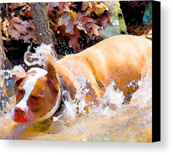 Dpg Canvas Print featuring the digital art Waterdog by John Toxey