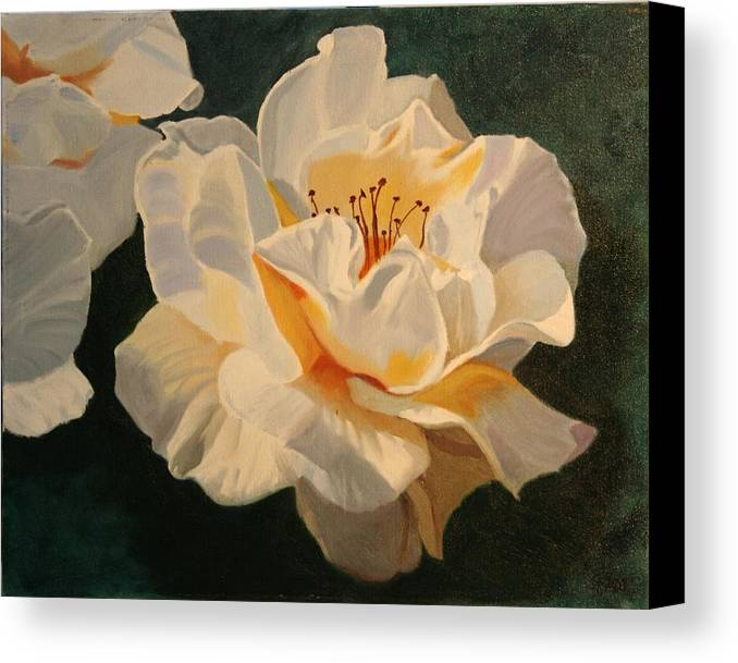 Floral Canvas Print featuring the painting White Rose by Robert Tower