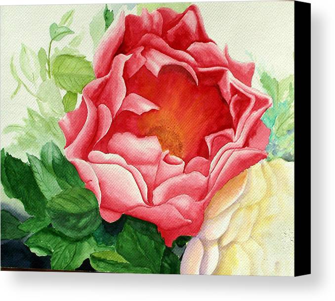 Red Rose Watercolor Painting Canvas Print featuring the painting Yes It Is A Rose by Robert Thomaston