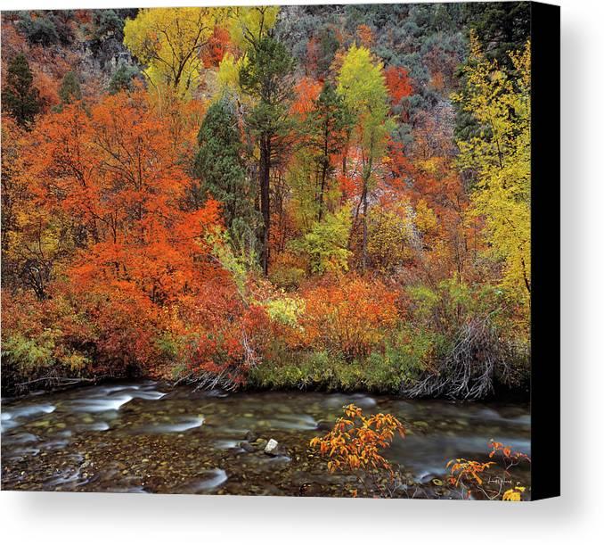 Idaho Scenics Canvas Print featuring the photograph Autumn Creek by Leland D Howard