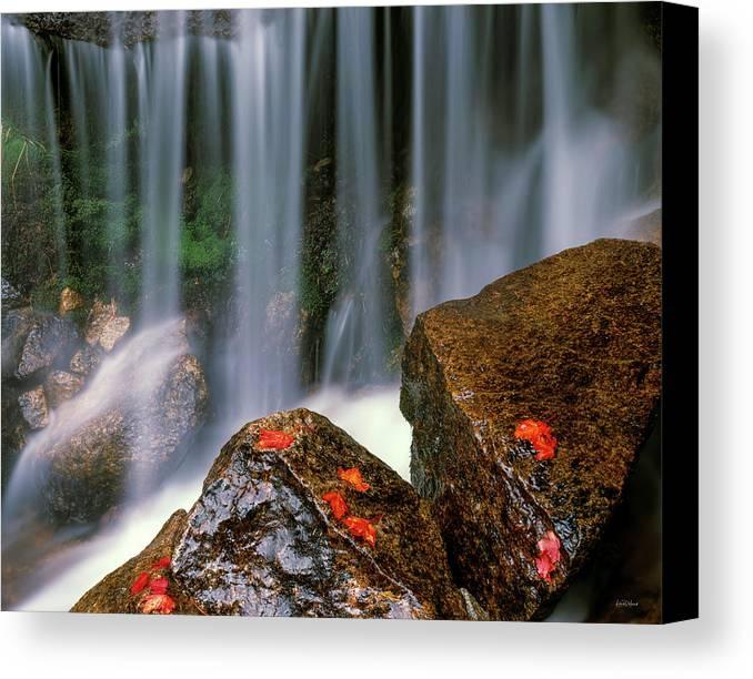 Idaho Scenics Canvas Print featuring the photograph Autumn Waterfall by Leland D Howard