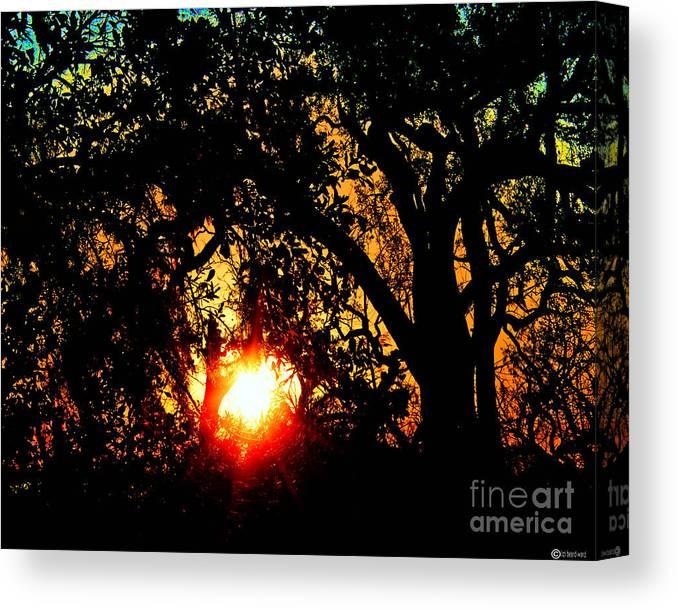 Louisiana Canvas Print featuring the digital art Creole Trail Sunset by Lizi Beard-Ward