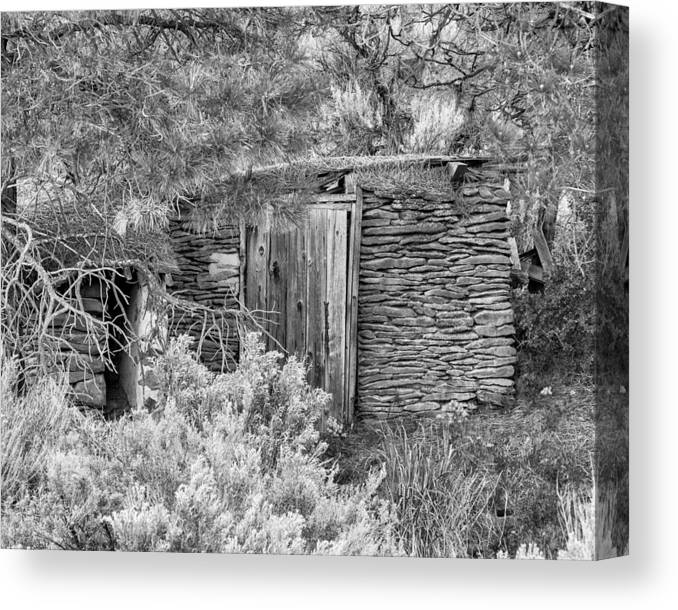 2013 Canvas Print featuring the photograph Abandoned Root Cellar - Alstown - Washington - May 2013 by Steve G Bisig