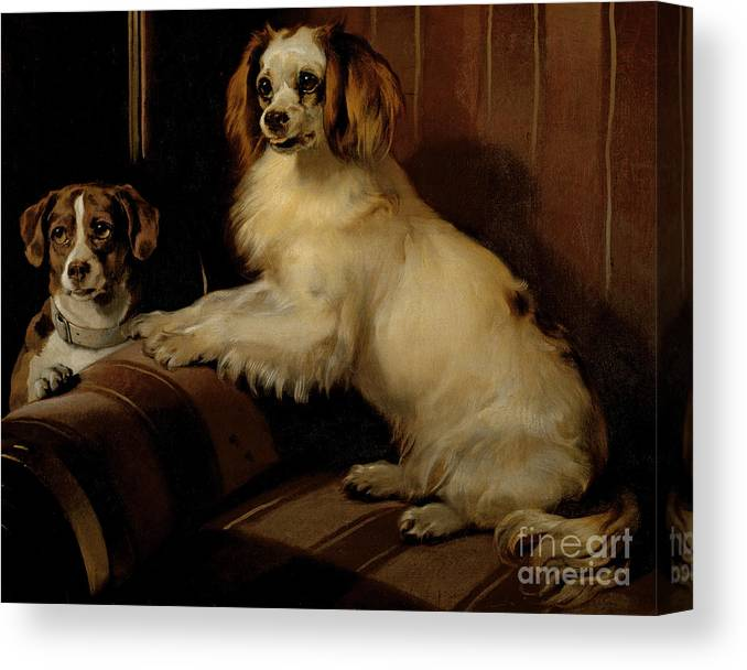 Dog Canvas Print featuring the painting Bony And Var by Sir Edwin Landseer