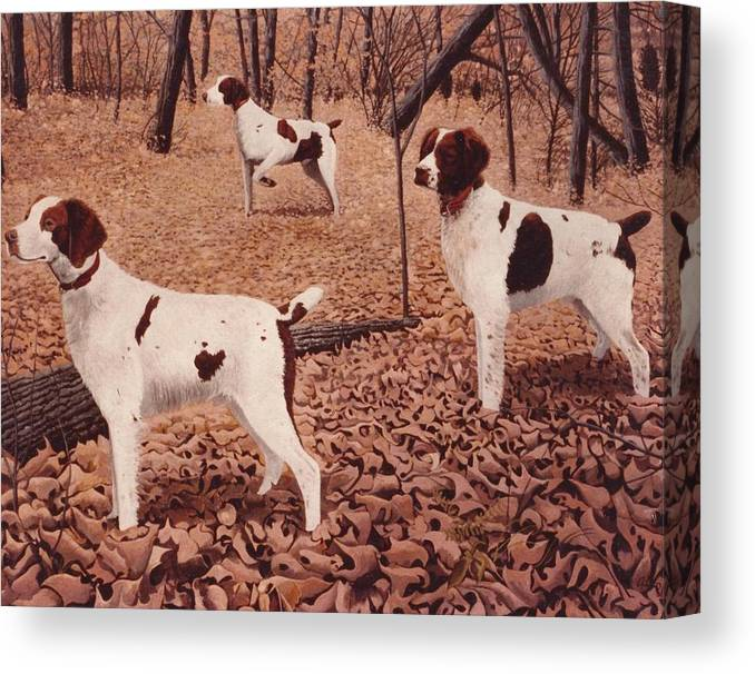 Brittany Hunting Dogs Canvas Print featuring the painting Brittanys On Point by Alan Suliber
