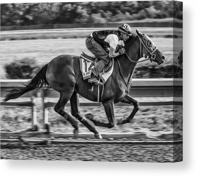 Race Horse Thoroughbred Jockey Gallop Running Track Racetrack Beulah Park Ohio Warm-up Workout Morning Finish Line Canvas Print featuring the photograph Carousel Race Horse by Richard Marquardt