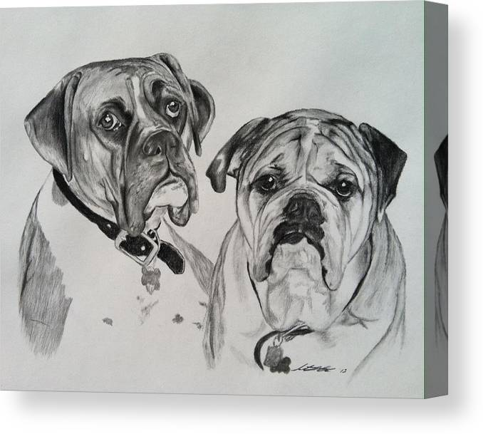 Dogs Canvas Print featuring the drawing Daisy And Duke by Sarah Counter