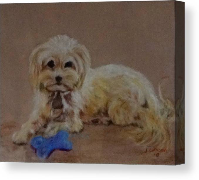 Drawing Canvas Print featuring the drawing Muffin by Jennifer Calhoun