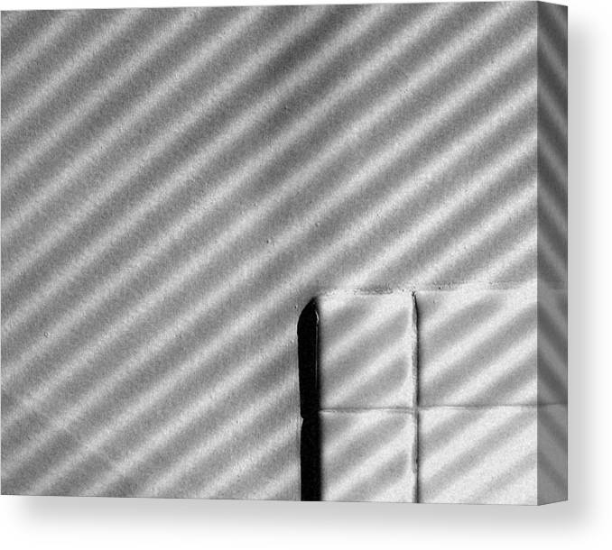 Still Life Canvas Print featuring the photograph Shadow Pattern by Michael Fenton