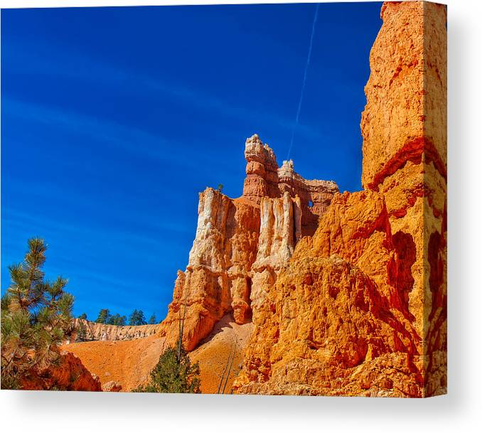 Landscape Canvas Print featuring the photograph Strange World by John M Bailey
