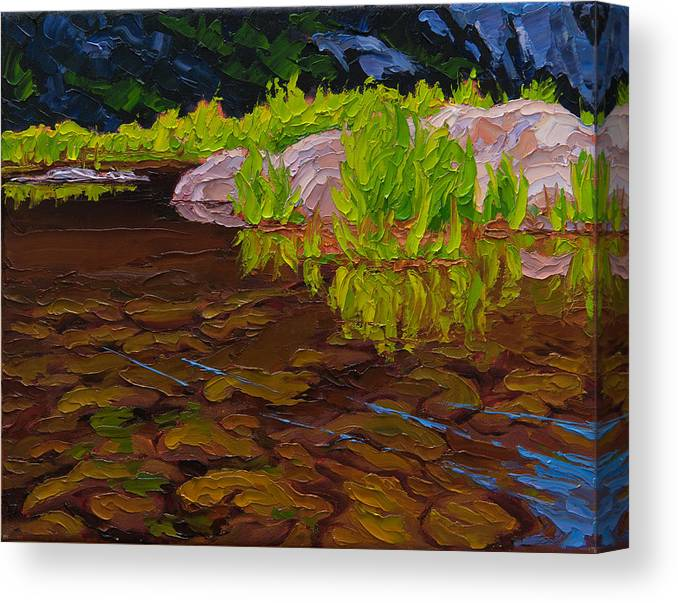 Summer Landscape Palette Knife Painting Canvas Print featuring the painting Sunlit Riverbed by Rob MacArthur